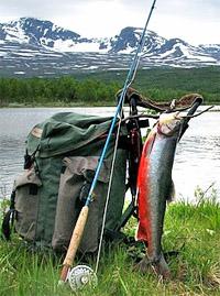 fjällfiske med Christer Ringbrant