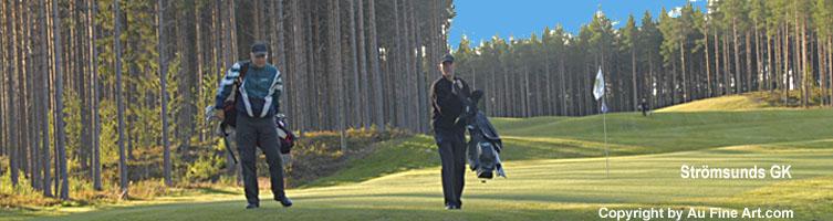 golfpaket gävle